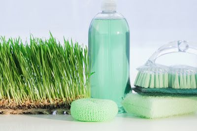26 eco pages             : Detox Your Home: Χημικά στο σπίτι