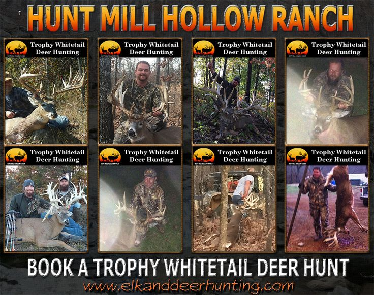 going to have to check out this Hunting Outfitter this upcoming Deer Season!!! Oklahoma Whitetail Deer Hunting Outfitter