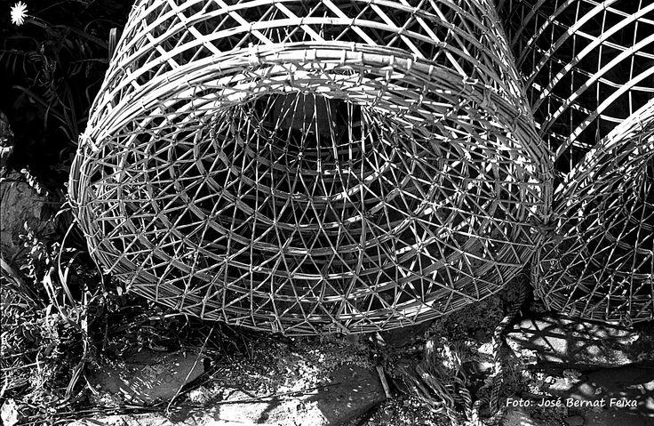 Om vis te vangen zwart wit foto 39 s pinterest - Te vangen zwart wit ontwerp ...