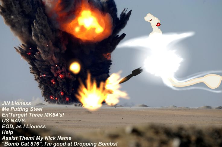 IRL Pic Of Me JIN Lioness Leviara, as Assist the US-NAVY EOD(Explosive Ordinance Disposal) as I Drop from my Wings Pylons Three MK84 2000LB Guided Free Fall Bombs. I'm an IED-AWI (Intercept Engage Destroyer-All Weather Interceptor)..As a Machine Cyborg Lioness IRL, This's My Primary Job, This's What I do Best, I'm Designed Primarily For War and All things Related.