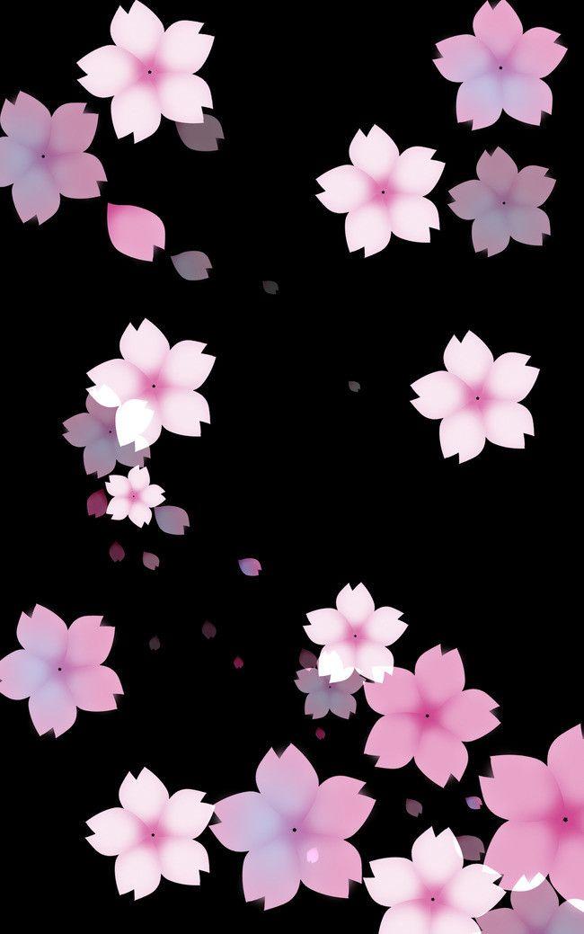 Aesthetic Background Black Cherry Beautiful Image I Wallpaper
