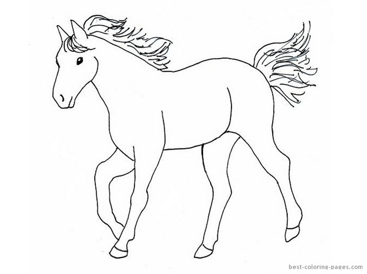 Horse Template | Easy horse drawing, Horse drawings, Horse coloring
