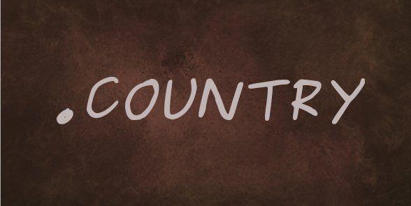 Pour les amoureux de #country le domaine .country est enfin disponible pour l'adresse de votre #blog #musique #danse