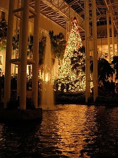 A Country Christmas, Delta Atrium, Gaylord Opryland Resort in Nashville... this is without a doubt an incredibly beautiful Resort!!! Stayed here a few years ago and loved it every inch of it! ~