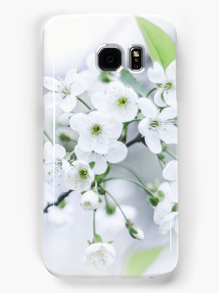 White cherry blossoms. photo, photography, artwork, buy, sale, gift ideas, redbubble, cherry, cherry blossoms, freshness, green leaves, spring flowers, spring trees, tenderness, white flowers, white petals, young, springtime, spring, samsung, galaxy, skin, case, cover, gadgets