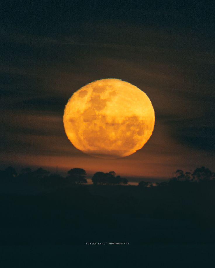 https://flic.kr/p/Pd3gP9 | Super moon over rural South Australia | Single exposure of the recent super moon as it rose above rural South Australia. Coomunga, Eyre Peninsula 15th November 2016