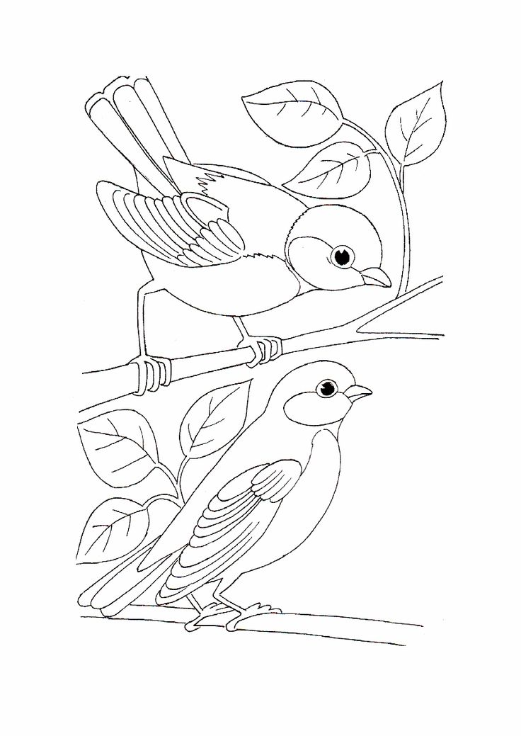 Simple Bird Coloring Pages | Best Coloring Page Site