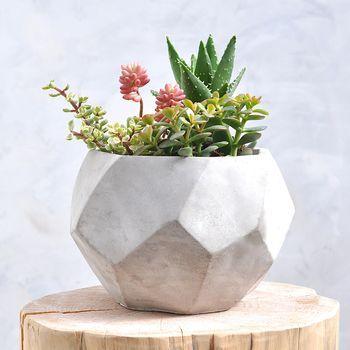 Geometric Concrete Pot