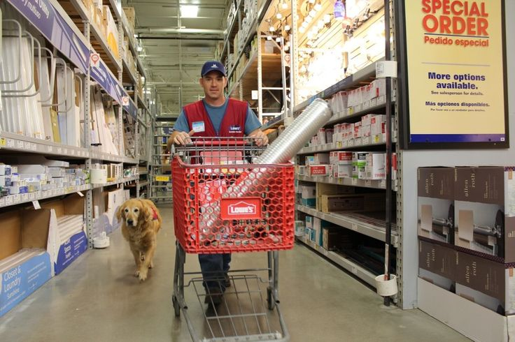 A disabled Air Force veteran needed a job. So Lowe's hired him — and his service dog.