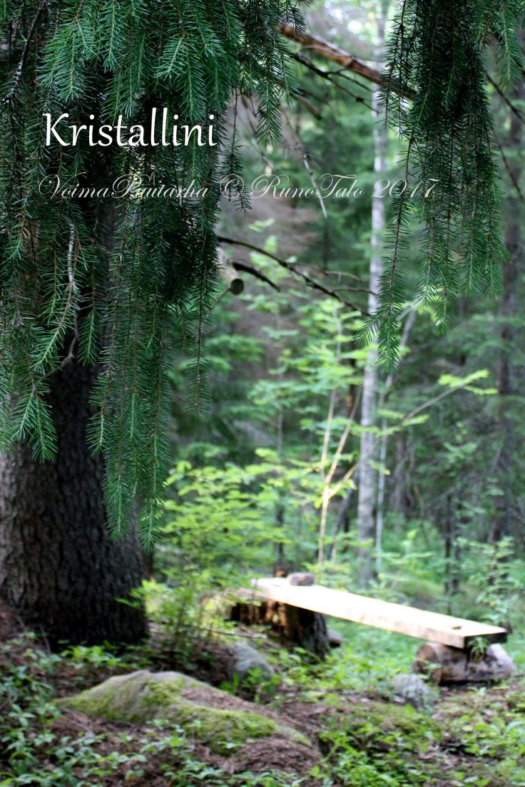 voimakortti Kristallini - voimametsän polun manifestaation puu ja voimarunohetken penkki