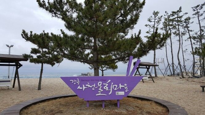 바우길 4구간 - 사천진해변 사천물회마을 안내표지