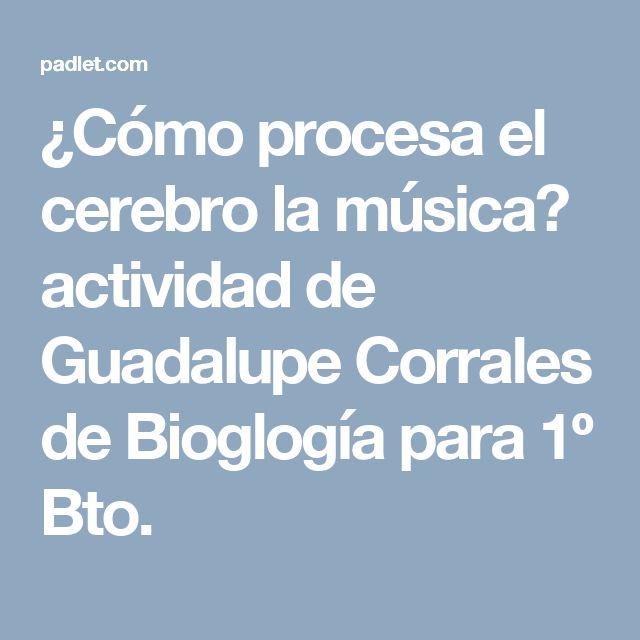 ¿Cómo procesa el cerebro la música? actividad de Guadalupe Corrales de Biología para 1º Bto.