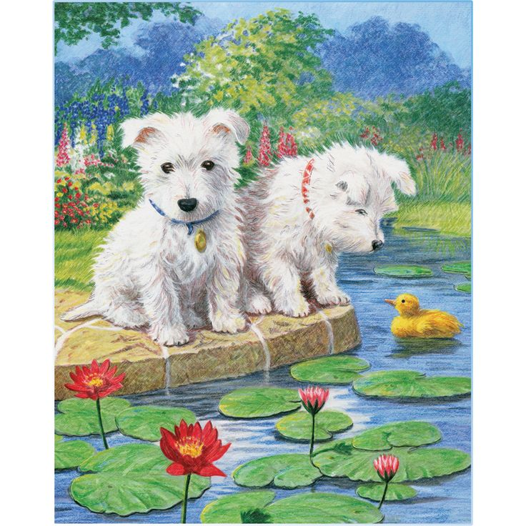 Royal Brush Color Pencil By Number Kit 8.75inX11.75inWestie Pups