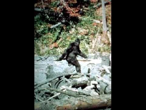 ▶ Bigfoot 'Jr' rips into Eric the Midget (11-13-12)