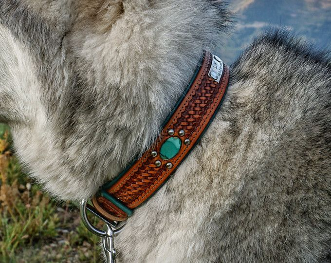 CUSTOM Leather Dog Collar // Southwestern Navajo Aqua
