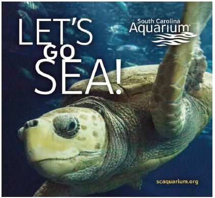 Coupon For Sc Aquarium 3 Off Per Person Useful Things