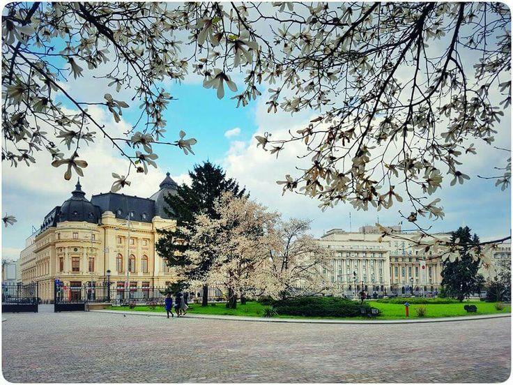#Bucharest #spring Foto: Vlad Eftenie