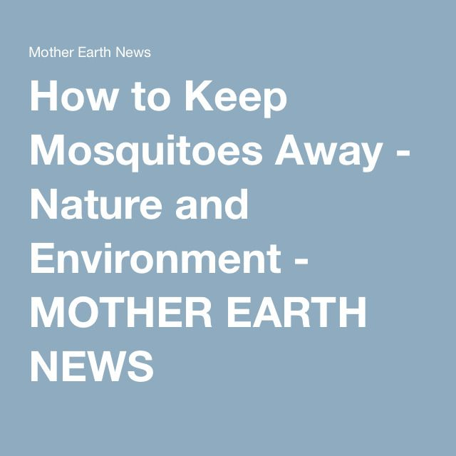 How to Keep Mosquitoes Away - Nature and Environment - MOTHER EARTH NEWS