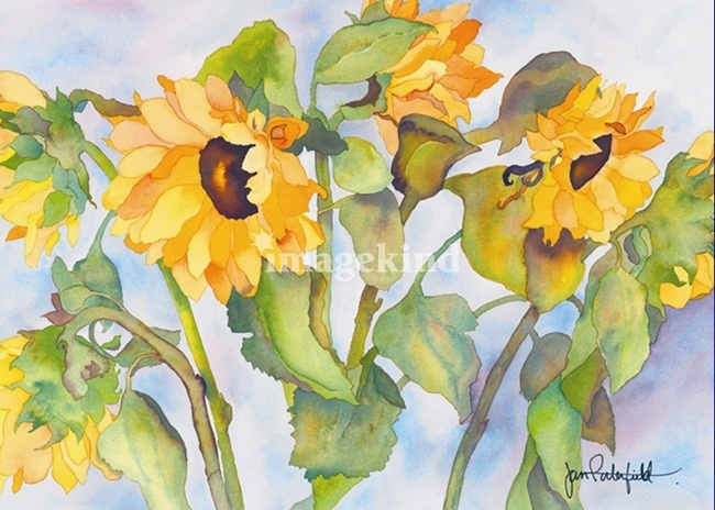 water color paintings of flowers, sun flower yellow hayes   Sunny Sunflower Art…