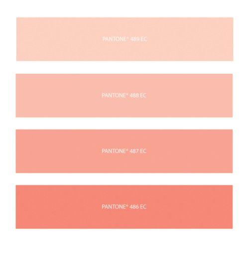 Peach palette color palette