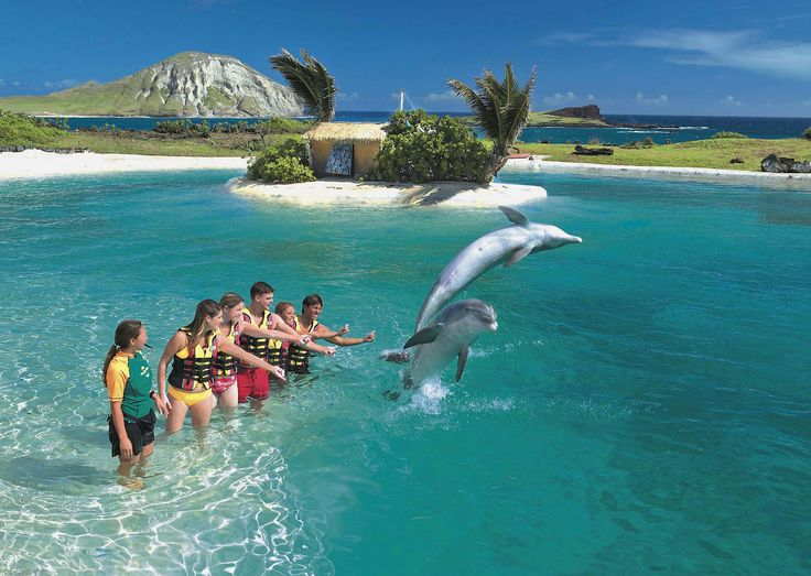 Are Disney Resort Beaches Just For Guests