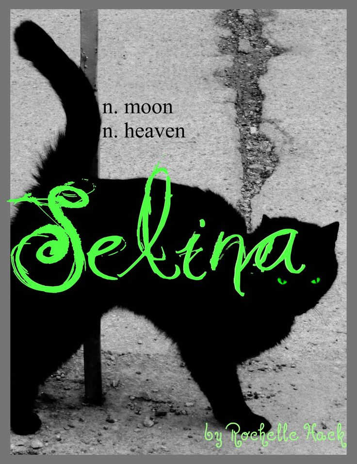 Baby Girl Name: Selina. Meaning: Moon; Heaven. Origin: Latin. http://www.pinterest.com/vintagedaydream/baby-names/