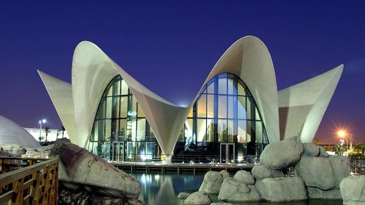 LOCEANOGRÀFIC OCEANOGRAPHIC PARK, SPAIN   Real WoWz