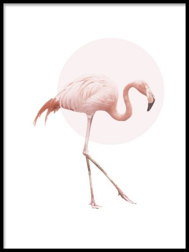 Decorative poster with a pink flamingo, this art print has a style that suits both modern and more retro home décor. Match with our other art posters with animal motifs to make a trendy art collage for your wall.