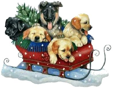 Image result for christmas puppy free clip art