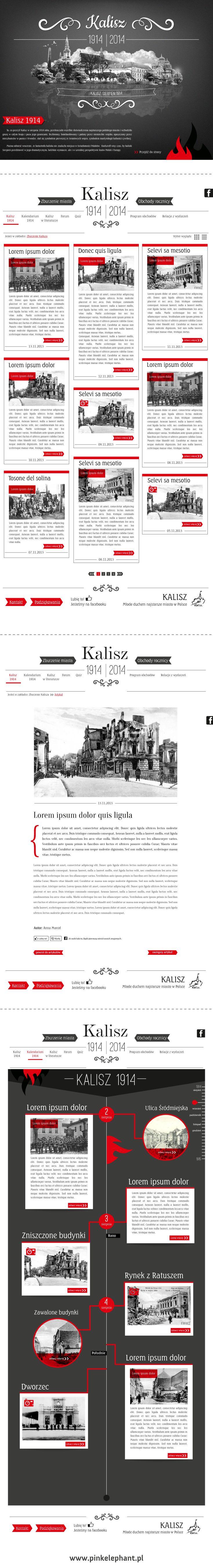 Official website of the destruction of Kalisz    Design: www.pinkelephant.pl /web design /layout /portfolio /web /design /logo