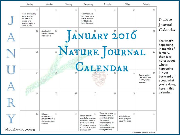 This journaling calendar gives you ideas for observing the natural  world in January and recording what you did and what you saw. http://blogshewrote.org/2016/01/14/january-nature-calendar/