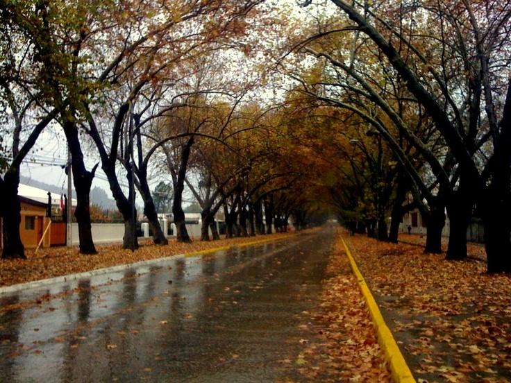 Limache - Chile
