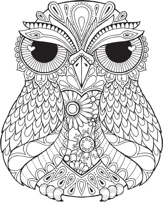 Cute owl coloring pages car interior design for Cute coloring pages of owls