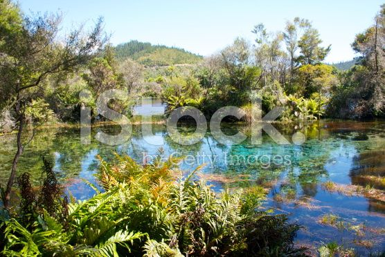 Te Waikoropupu Springs, Takaka, New Zealand royalty-free stock photo