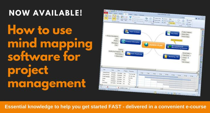 Project management with mind mapping software