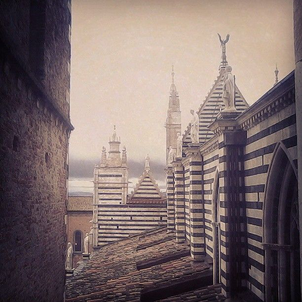 A guided visit to the roof of #Siena's Cathedral