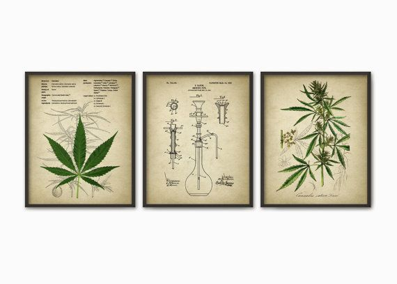 Cannabis Smoking Wall Art Print Set of 3 - Marijuana Smoking Wall Art - Pot Grass Hashish Educational Poster Set - Weed Bong Art  Printed using high quality archival inks on heavy-weight archival paper with a smooth matte finish. A fantastic gift or a fabulous addition to your home!  Please choose between different colors and sizes.  ---------------------------------------------------------------------------------------------  Shop home:  http://www.etsy.com/uk/shop/Q...