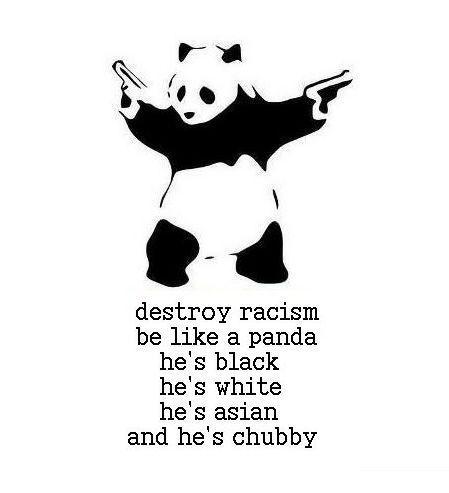 Destroy racism.Ahahaha, Pandas Power, Panda Racism, Ninjas Pandas, Too Funny, So True, Pandas Rules, Panda Bears, Destroyer Racism