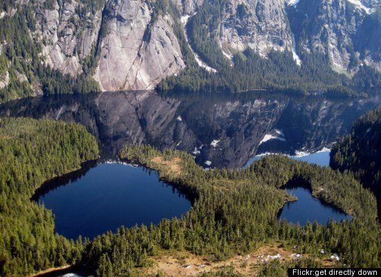 Tongass National Forest | Audubon Alaska