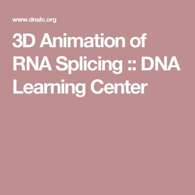 3D Animation of RNA Splicing :: DNA Learning Center