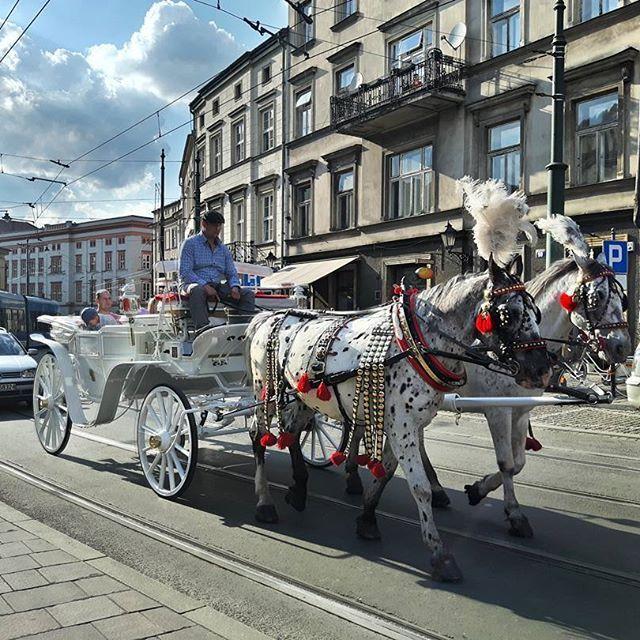 Ewolucja pojazdow.  Jak dobrze, że jesteś Słoneczko! Mam więcej sił, aby wychodzić z domu i robić coś ze sobą! :)) #krakow #igerspoland #igerskrakow #mobilnytydzien80 #galaxys5 #małopolska #malopolskatogo #horse #architecture #skyporn #cracow #traveling #polskajestpiekna #pocztowkazpolski #instagood #super_polska