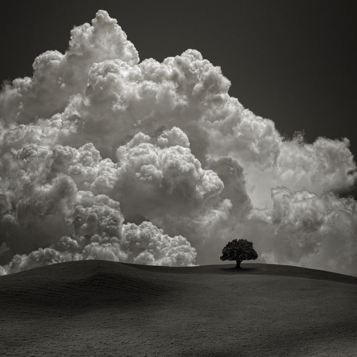 Storm behind the hill.: Hill, Nature, Landscape Quilts, Black White, Carlo Gotay, Trees, Blue Sky Clouds, Storms, Photography
