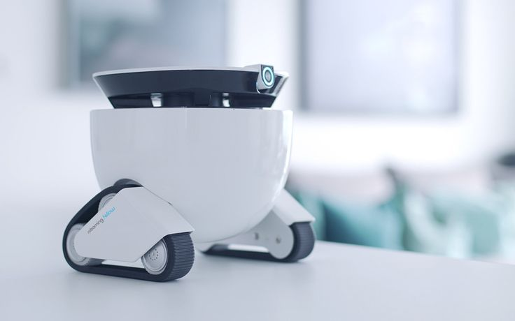 This small robot is designed as a cute domestic companion, outfitted for home security, remote observation, and even snack delivery to pets.