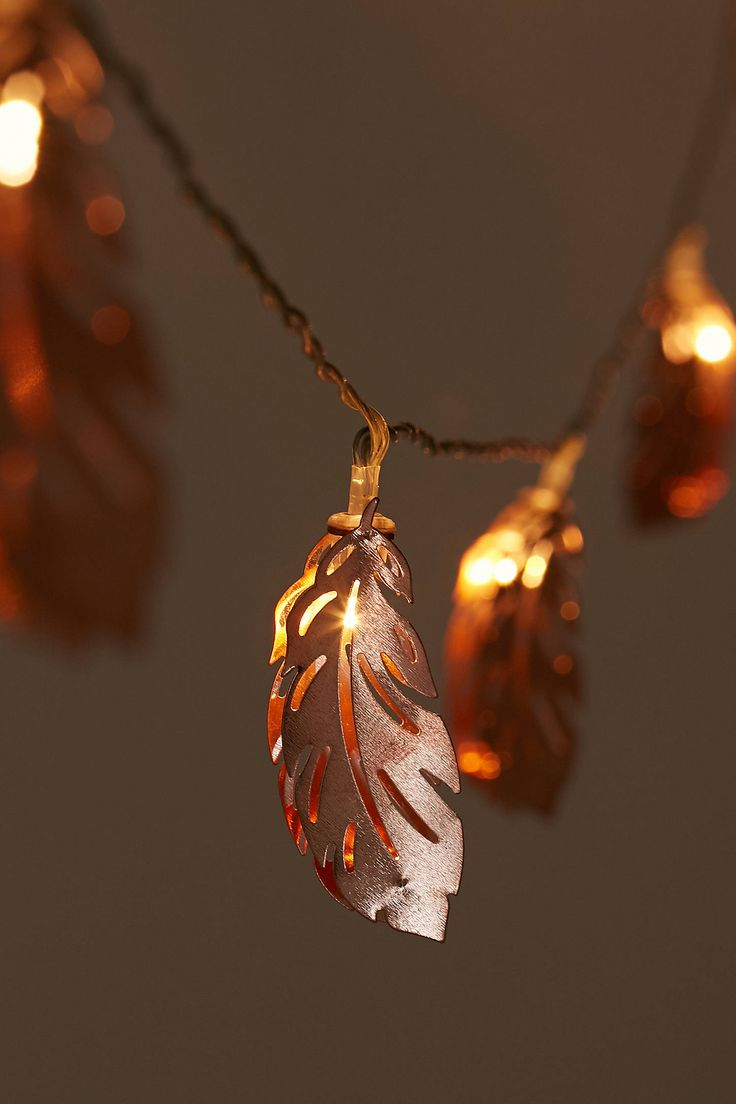 Or sleeping bags clothes pegs optional fairy lights optional - Copper Feather String Lights