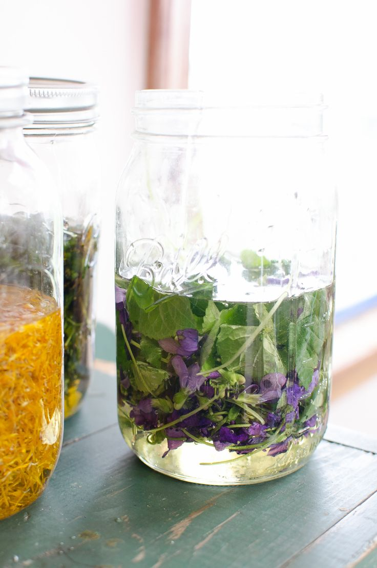violet herbal oil infusion