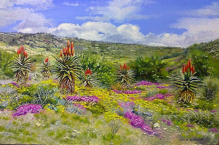 """oils & brush on block mounted board 400 x  """"ALOES AND KAROO FLOWERS"""" 400 X 600 sold"""