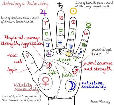 A nice graphic of the areas of the hand. The type of palmistry I use each day with my clients doesn't align exactly with this - but it's a great starting point for discussion.  After all, as humans we like to name things - it helps us find a common starting point.  Deeper than learning the names of the areas of the hands, is the calling to learn how these areas reflect back to us our inner workings - what our mind has set forth as our particular dharma or soul contract.