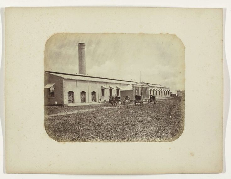 Suikerfabriek Seloredjo 1876-1884