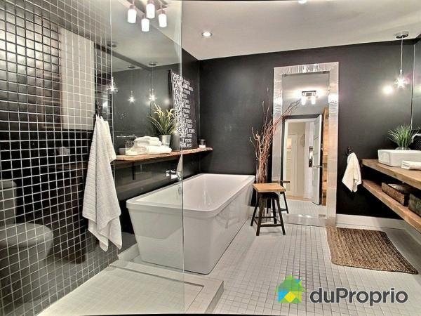 salle de bain de r ve noire et blanche tr s belle douche. Black Bedroom Furniture Sets. Home Design Ideas