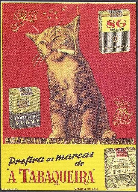 """Tabaqueira, 1950s (Scanned from the book """"Portugal Século XX, Crónica em Imagens, 1950-1960"""" by Joaquim Vieira)"""